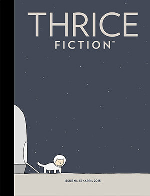 Thrice Fiction Magazine - March, 2011 - THE END