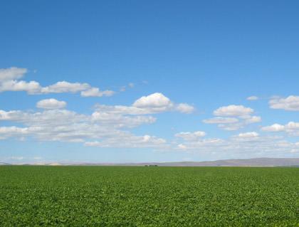 Road to Spokane