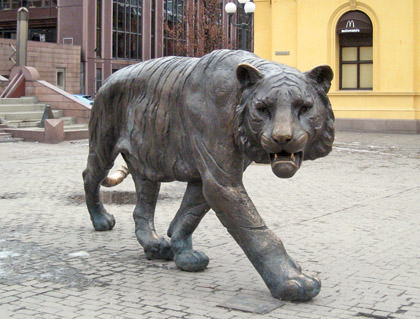 Oslo Tiger!