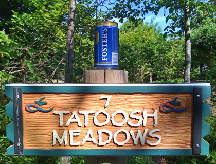 Hole #7: Tatoosh Meadows
