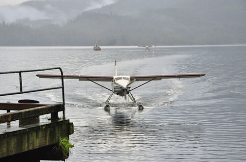 Float Plane Landing in Neets Bay