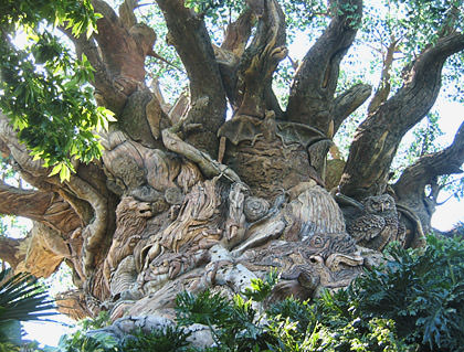 Disney Animal Kingdom Tree of Life
