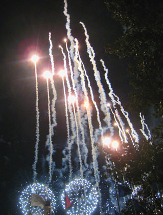 Walt Disney World Fireworks