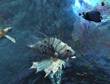 Ocean Blue Fish