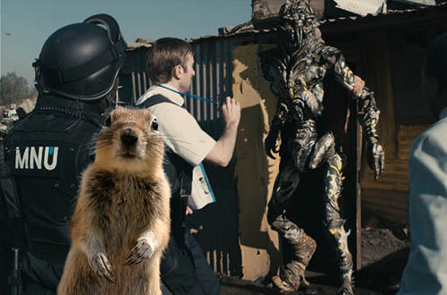 Crasher Squirrel in District 9