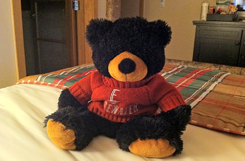Stuffed Black Bear Teddy