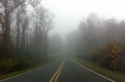 Foggy Georgia Morning