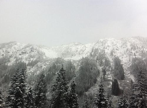 Stevens Pass Snowy