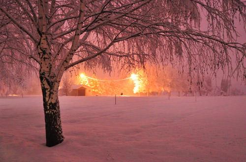 Snowy Cemetery at Night