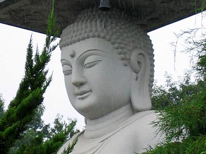 Buddha Seoul