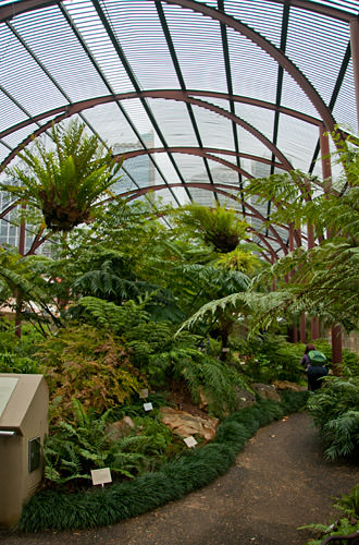 Royal Botanic Gardens Fern House