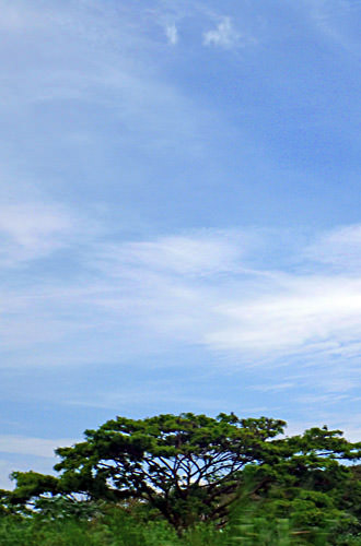 Fiji Blue Sky