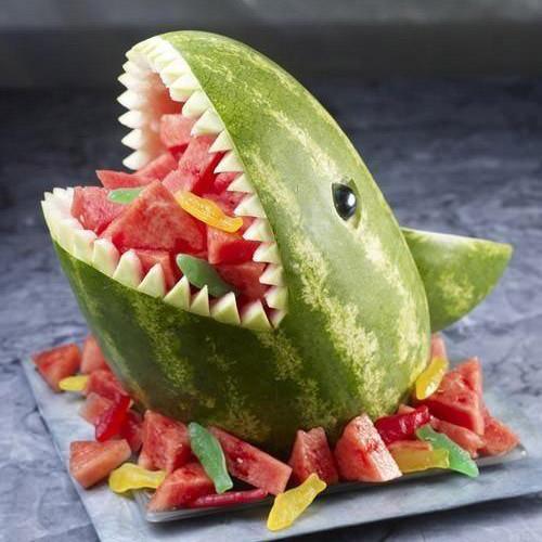 Shark Extreme Melon
