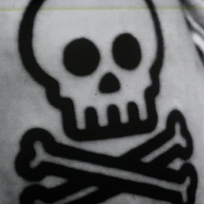 CRT Skull