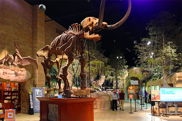 Creation Museum Entrance Hall