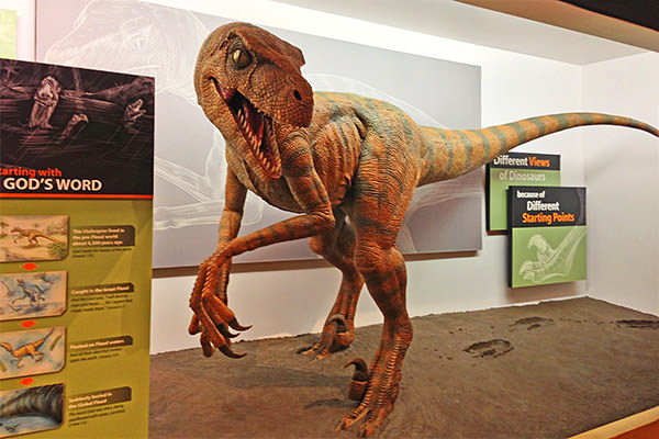Creation Museum Dino!