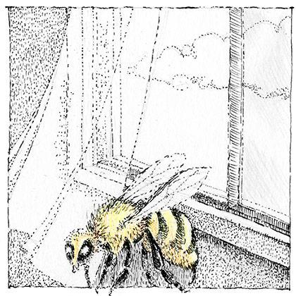 Bee by ROSEBERG