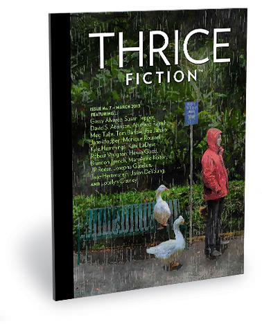 THRICE FICTION Issue No. 7