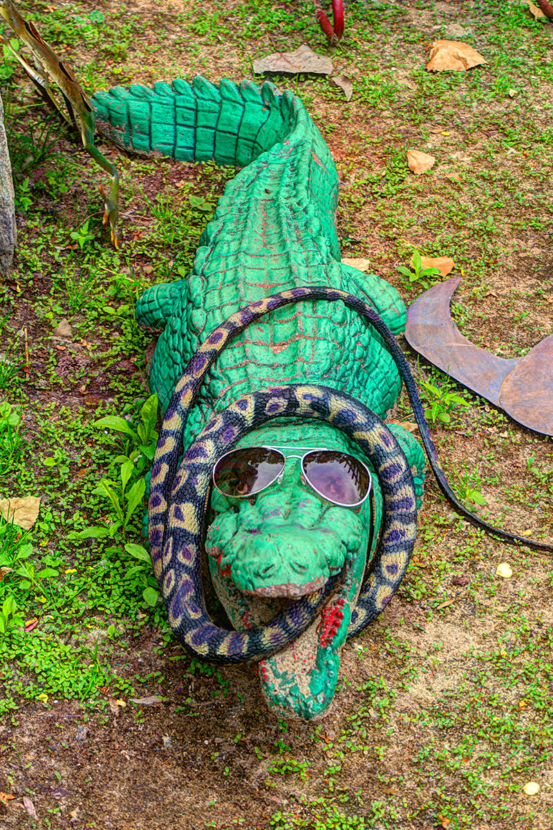 Randyland Gator and Snake