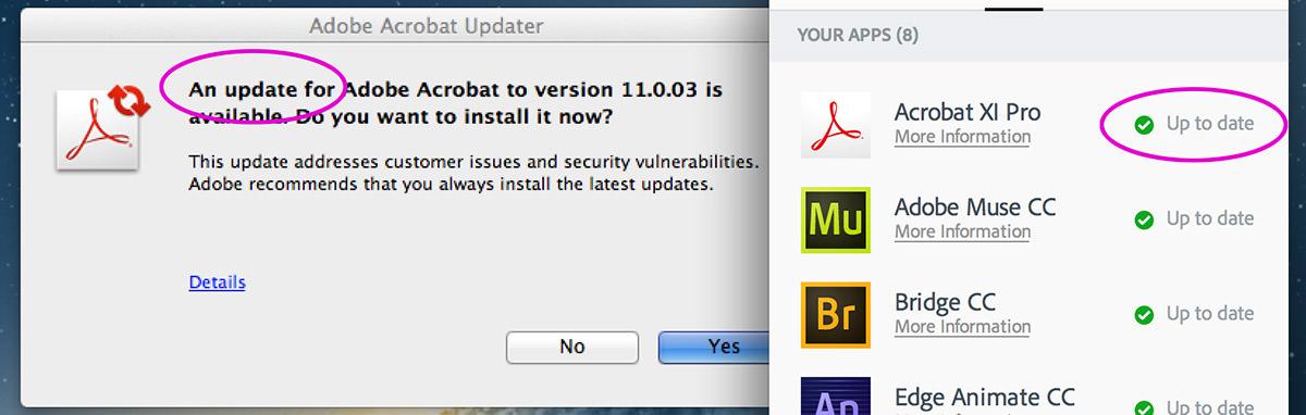Adobe Update Update!