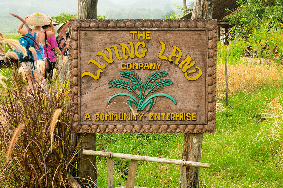 Living Land Rice Farm in Laos