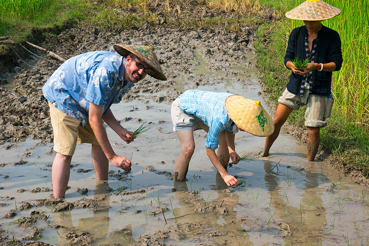 Living Land Rice Farm in Laos