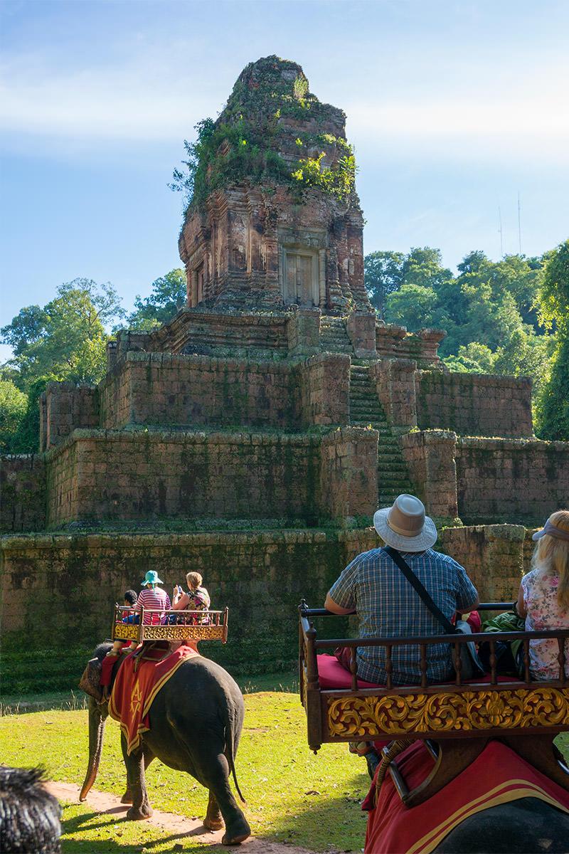 Elephant Ride on Chitham