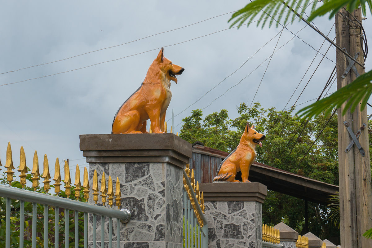 Mekong Dog Statue Guardians