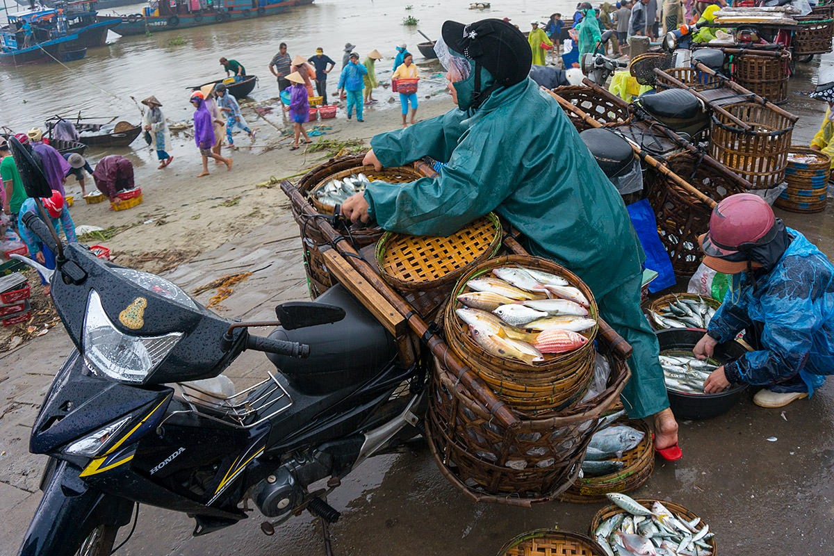 Vietnam Loading Fish on a Bike