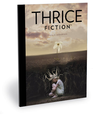 Thrice Fiction No. 9