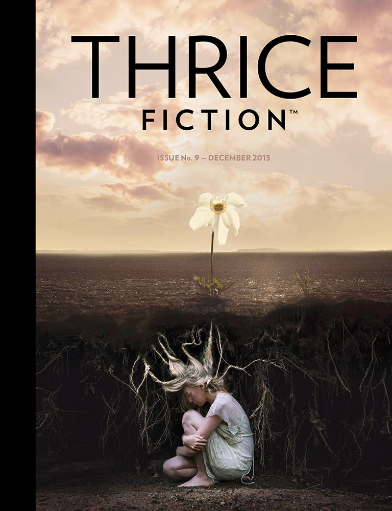 Thrice FictionIssue No. 9