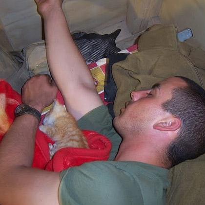 Marine Cats!
