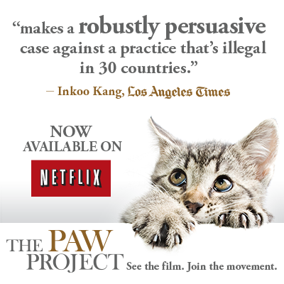 The PAWS PROJECT Poster