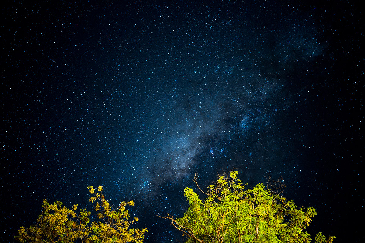 Zimbabwe Night Sky