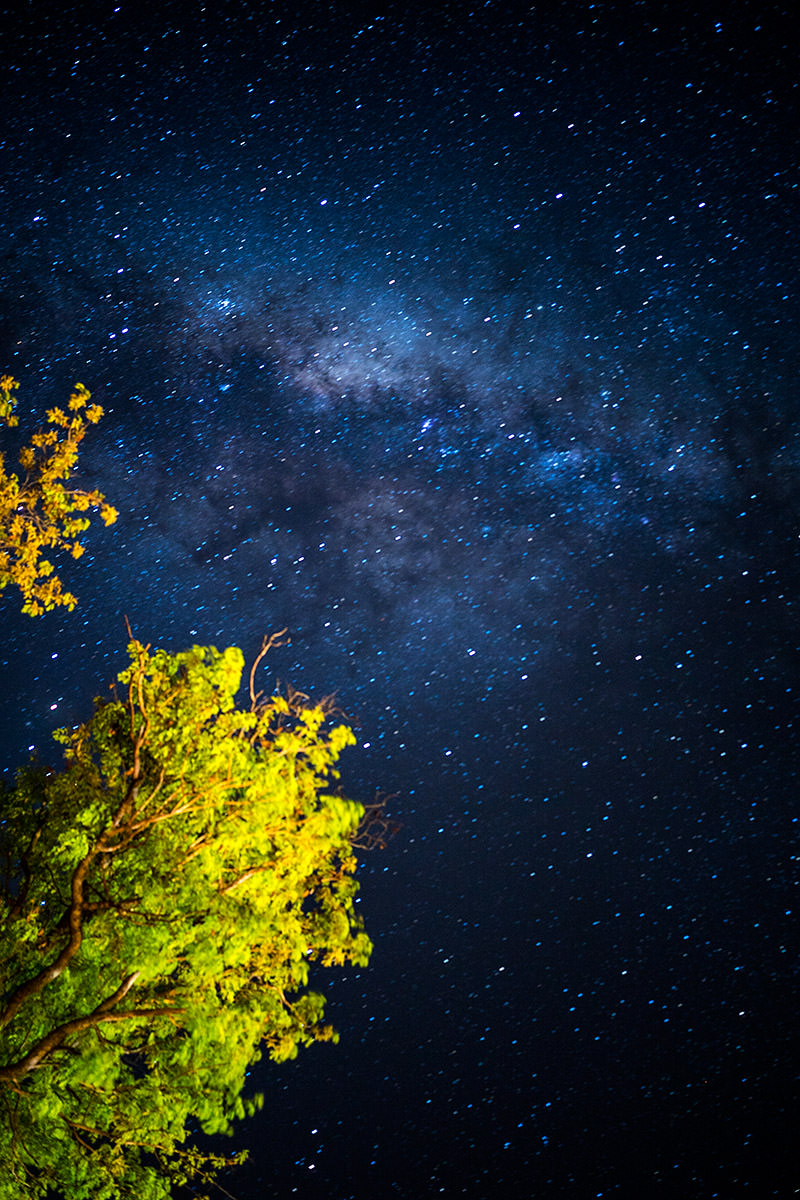 Zimbabwe Night Sky Milky Way