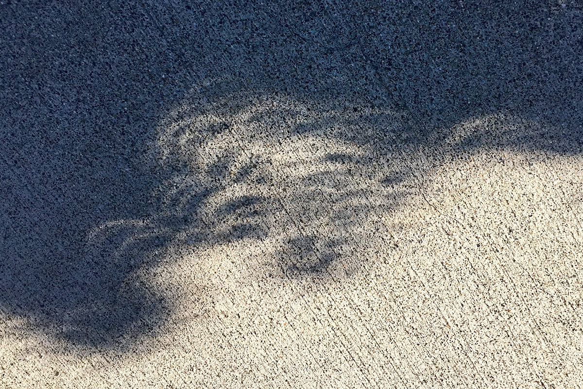 Total Eclipse Shadows!