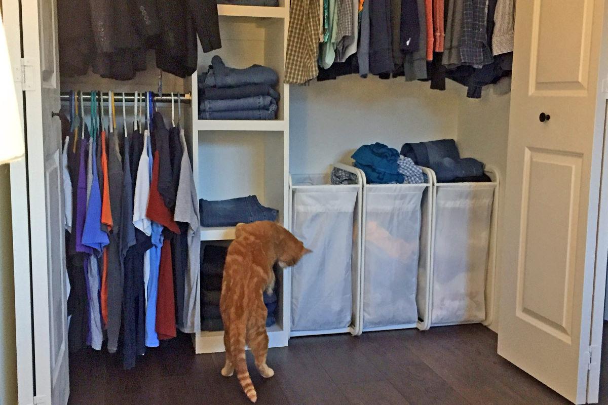Jenny Investigates My Closet Organizer!