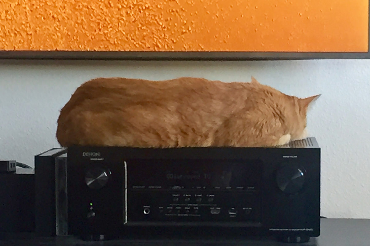 Jenny on the Stereo Receiver