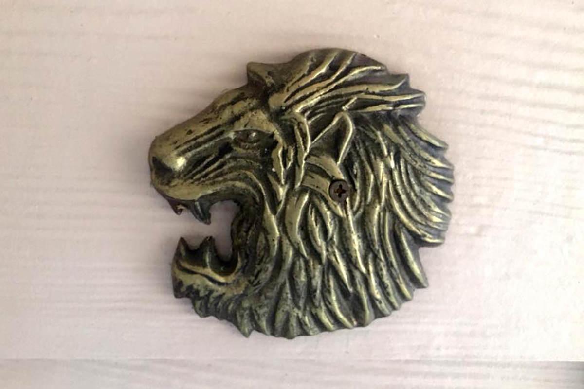 My feisty lion head!