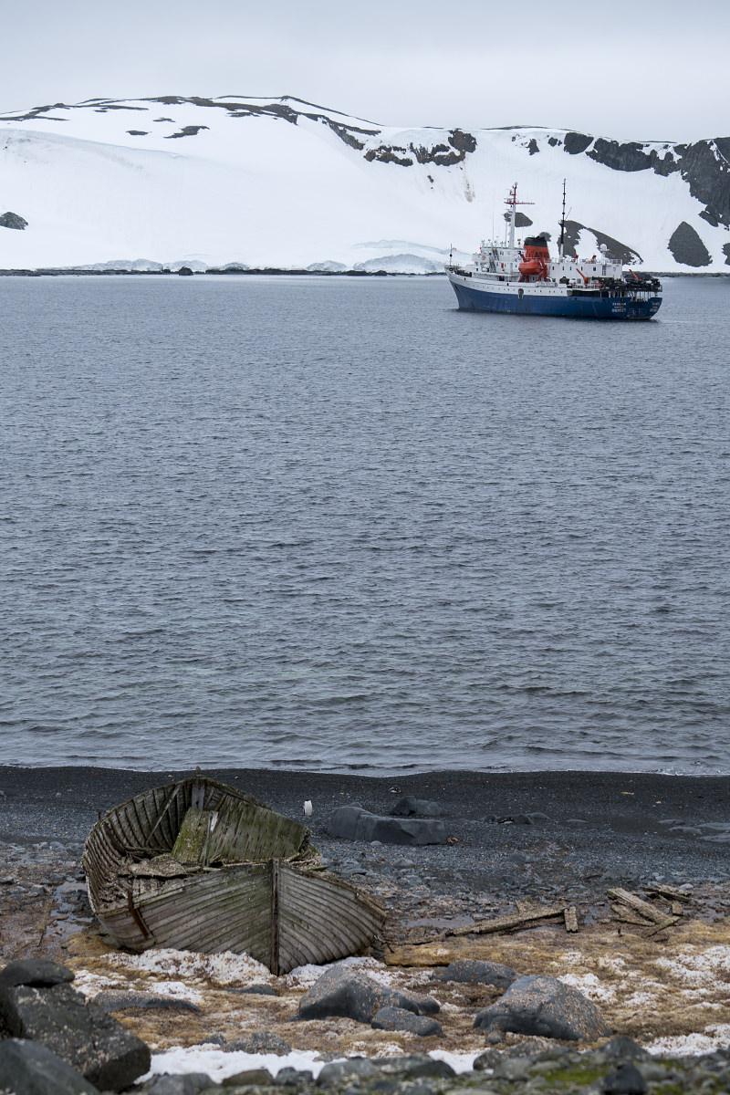 Half Moon Island Antarctica