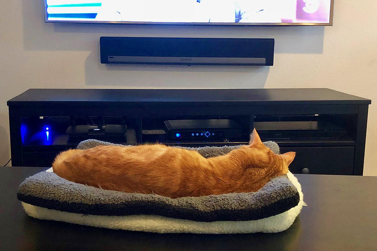 Jenny TV Sleeper