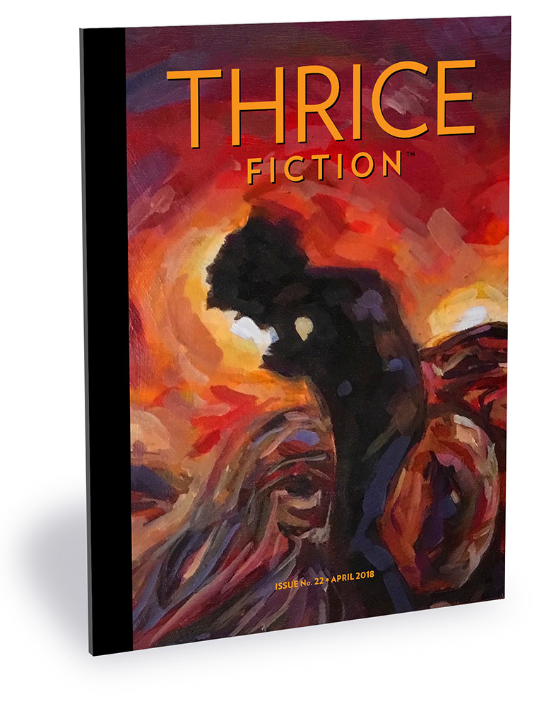Thrice Fiction No. 22