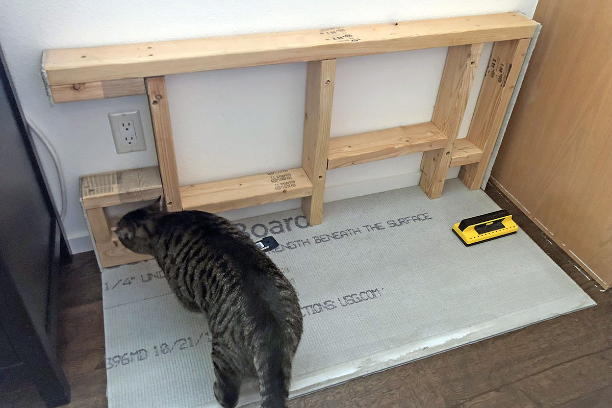 Cat Feeding Station Construction!