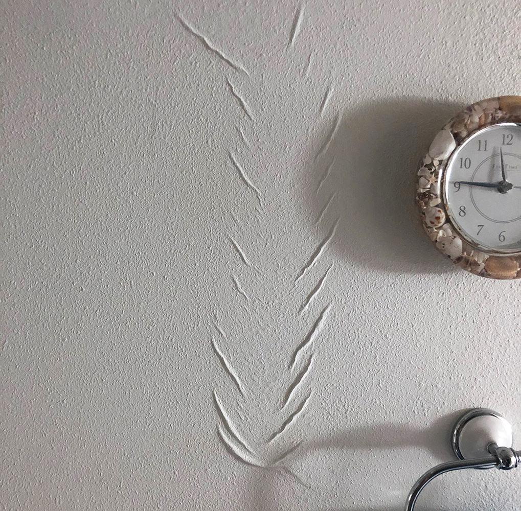 Remodel Wall Sag