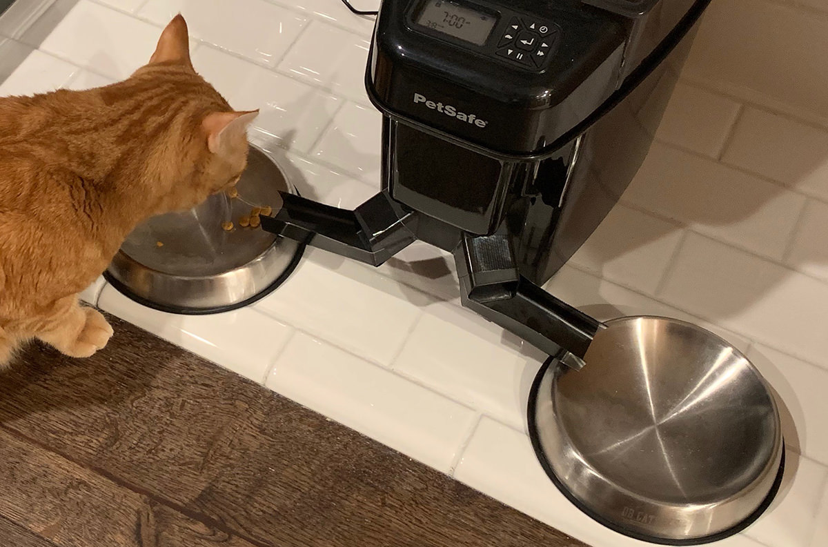 Modified Cat Feeder Splitter