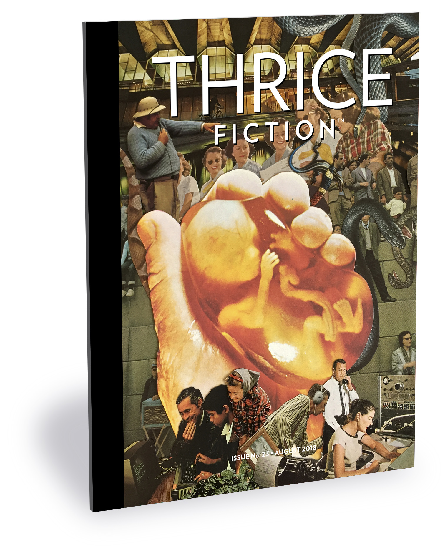 Thrice Fiction Magazine No. 23