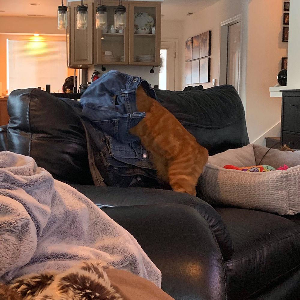 Jenny in Pants!