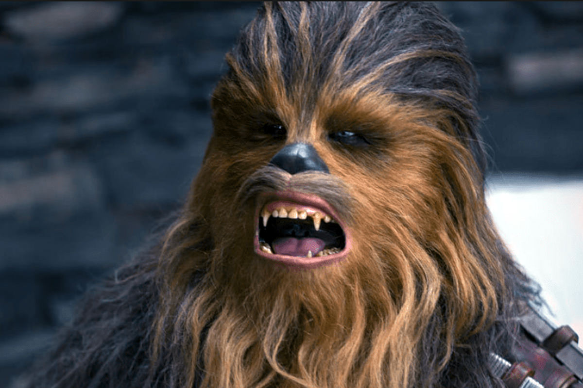 Peter Mayhew as Chewbacca!