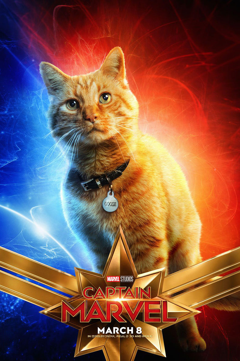 Captain Marvel Goose Poster