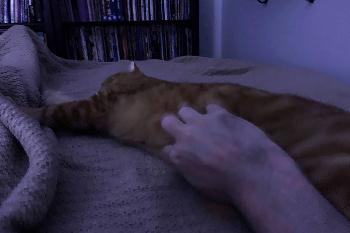 Jenny Tummy Rubs at Midnight